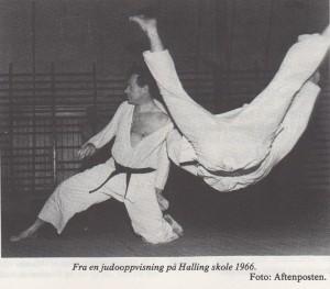Henrik Lundh - Halling skole 1966