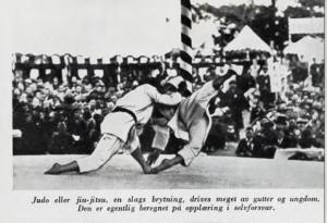 Bilde fra boken - Japan krigernes og blomsterelskernes land