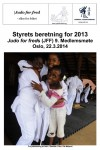 JFF-Styrets-beretning-2013-1