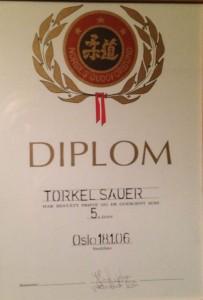 Diplom 5-dan 2006 - Torkel Sauer
