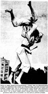 Oppvisning Frognerparkeen-bilde - 8 juni 1963
